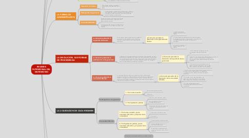 Mind Map: REGIMEN PATRIMONIAL DEL MATRIMONIO