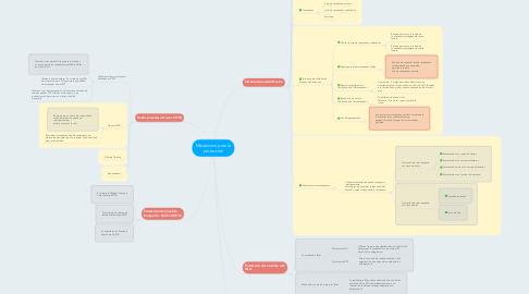 Mind Map: Mecanismo para la protección