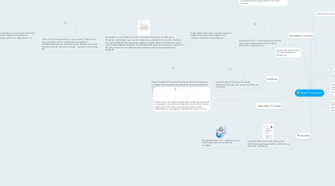 Mind Map: Textos Funcionales