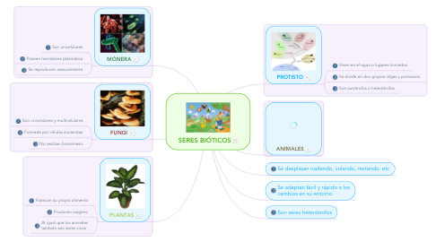 Mind Map: SERES BIÓTICOS