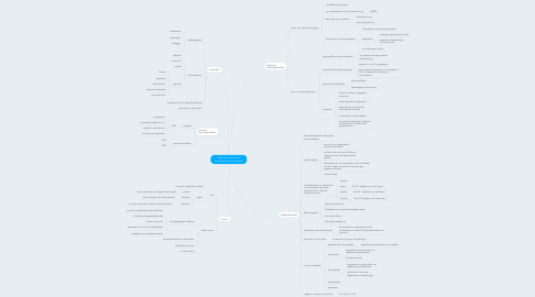 Mind Map: Mindmap bij de cursus Vakdidactiek de wiskundeles