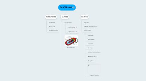 Mind Map: LA CELULA