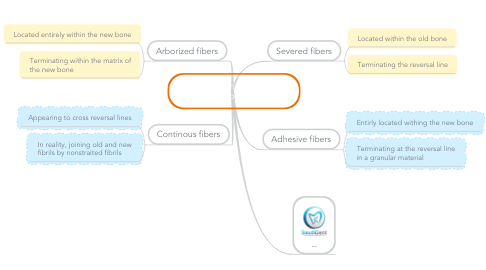 Mind Map: Classification of Sharpey's Fibers