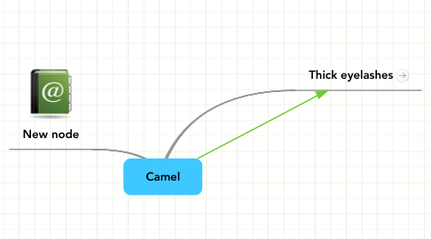 Mind Map: Camel