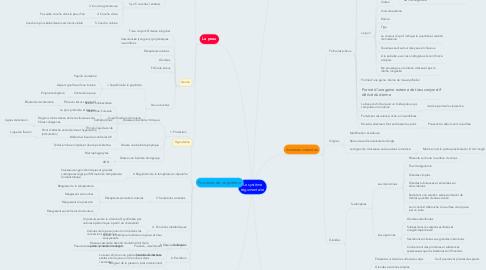 Mind Map: Le système tégumentaire