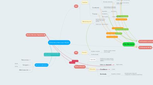 Mind Map: El Sistema Nervioso Motor