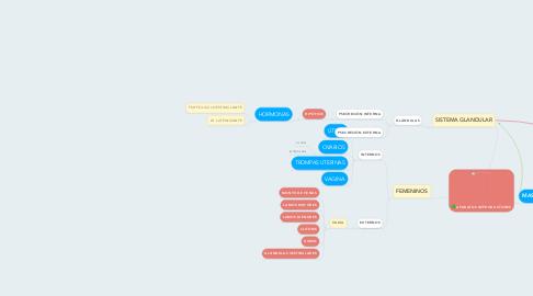 Mind Map: APARATOS REPRODUCTORES