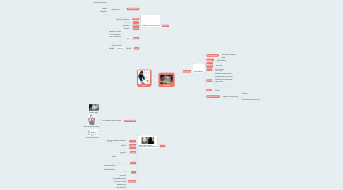 Mind Map: criminalistica