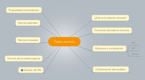 Mind Map: Tejido nervioso