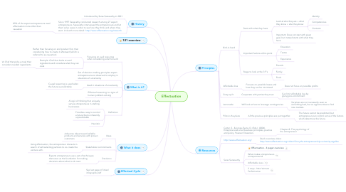 Mind Map: Effectuation