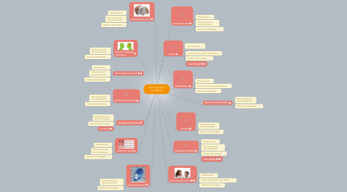 Mind Map: 14 Categories of Disabilities