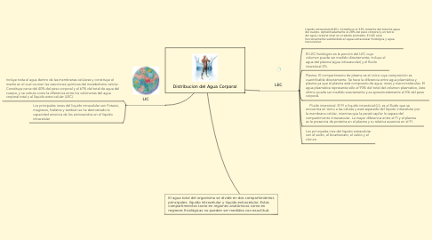 Mind Map: Distribucion del Agua Corporal