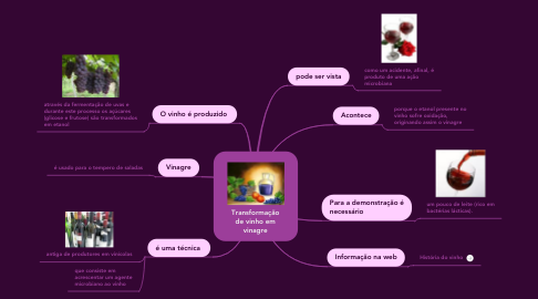 Mind Map: Transformação de vinho em vinagre