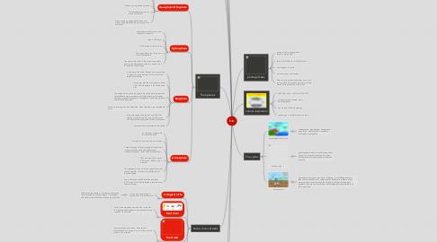 Mind Map: bio
