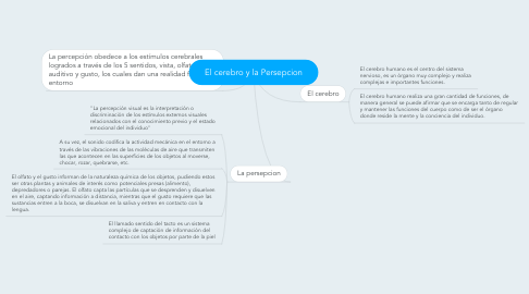 Mind Map: El cerebro y la Persepcion