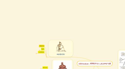 Mind Map: APARATO LOCOMOTOR