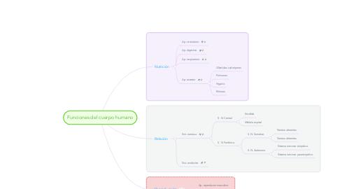 Mind Map: Funciones del cuerpo humano
