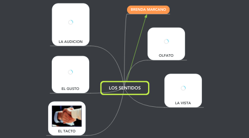 Mind Map: LOS SENTIDOS
