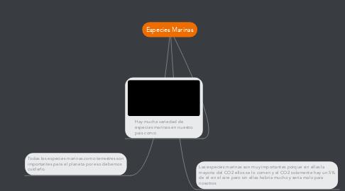 Mind Map: Especies Marinas