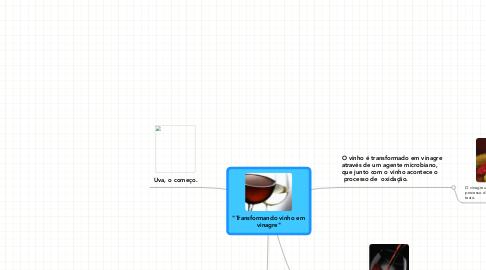 """Mind Map: """"Transformando vinho em vinagre"""""""