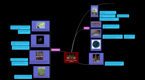 Mind Map: PHY111 Sum '10 Ashli Johnson