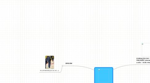 Mind Map: VINHO E VINAGRE