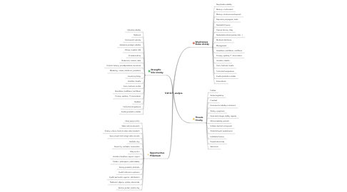 Mind Map: S.W.O.T. analýza