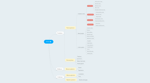 Mind Map: BRAIN