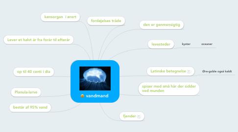 Mind Map: vandmand