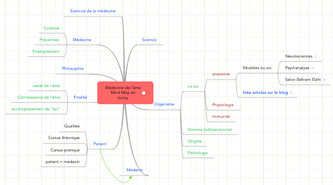 Mind Map: Médecine de l'âme Mind Map en friche