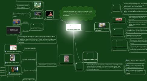 Mind Map: Fenómenos Cadavéricos