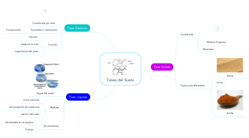 Mind Map: Fases del Suelo