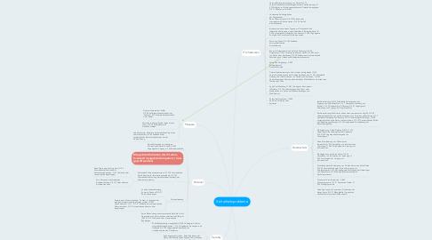 Mind Map: Sicherheitsprobleme
