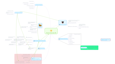 Mind Map: Prácticas Profesionales ITM