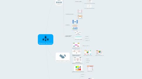 Mind Map: Management des Hommes