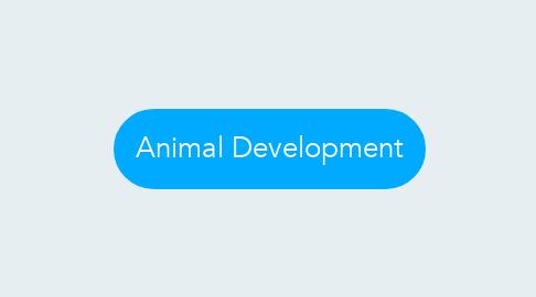 Mind Map: Animal Development