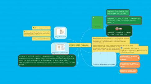 Mind Map: SISTEMA OSEO Y CELULA