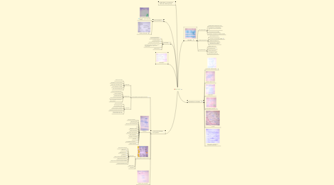 Mind Map: FoT 2015