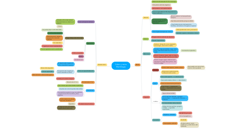 Mind Map: Colon y recto Morfología