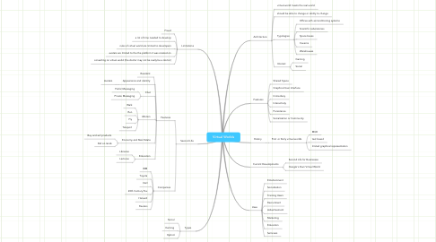 Mind Map: Virtual Worlds