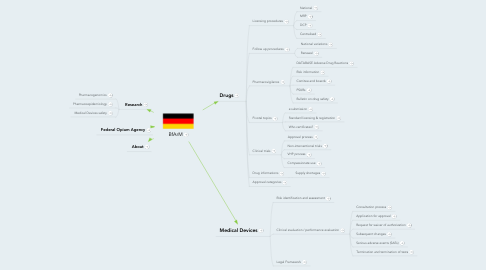 Mind Map: BfArM