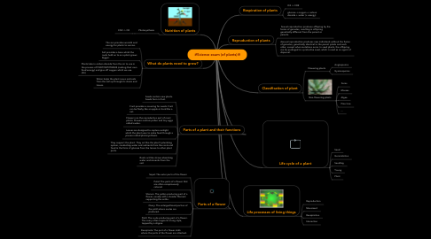 Mind Map: ❇Science exam (of plants)❇