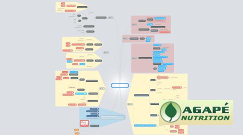 Mind Map: Autism Treatment Plan Overview