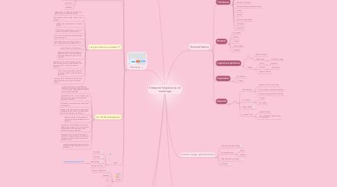Mind Map: Enseigner l'anglais avec le numérique