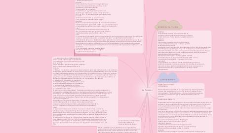 Mind Map: La Posesion