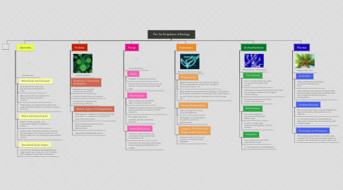Mind Map: The Six Kingdoms of Biology