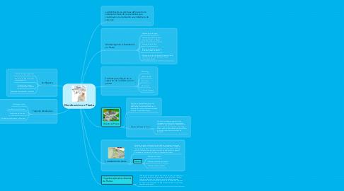 Mind Map: Distribución en Planta