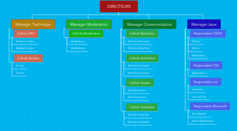 Mind Map: DIRECTEURS