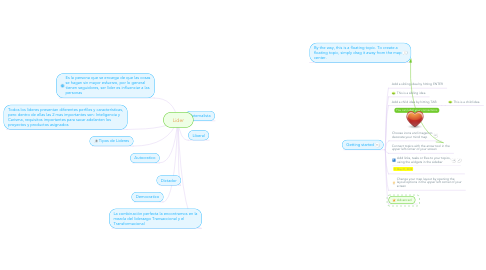 Mind Map: Lider