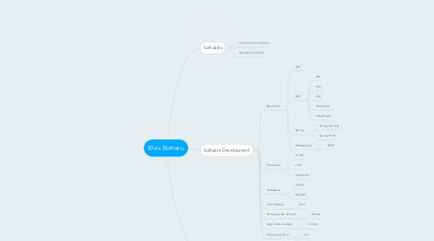 Mind Map: Elvis Botnaru